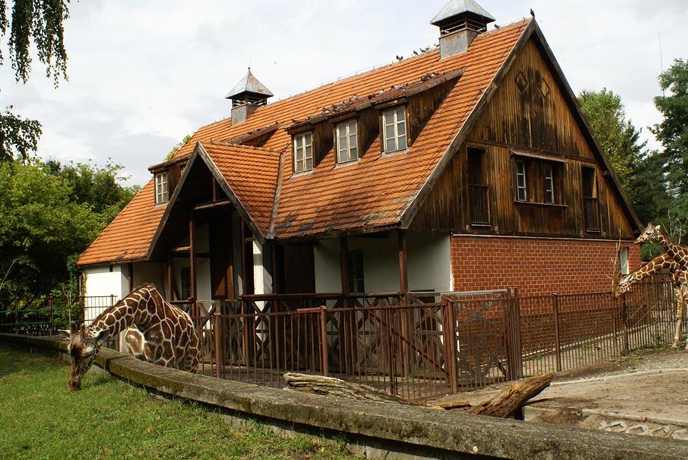 Ogród Zoologiczny We Wrocławiu Jest Najstarszym I